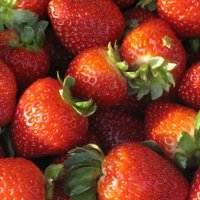 Лучшие продукты для похудения: ТОП 17