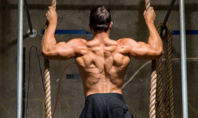 Как накачать спину 18 законов правильной тренировки спины