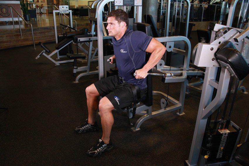 Тренировка всего тела для новичков 15 упражнений фото