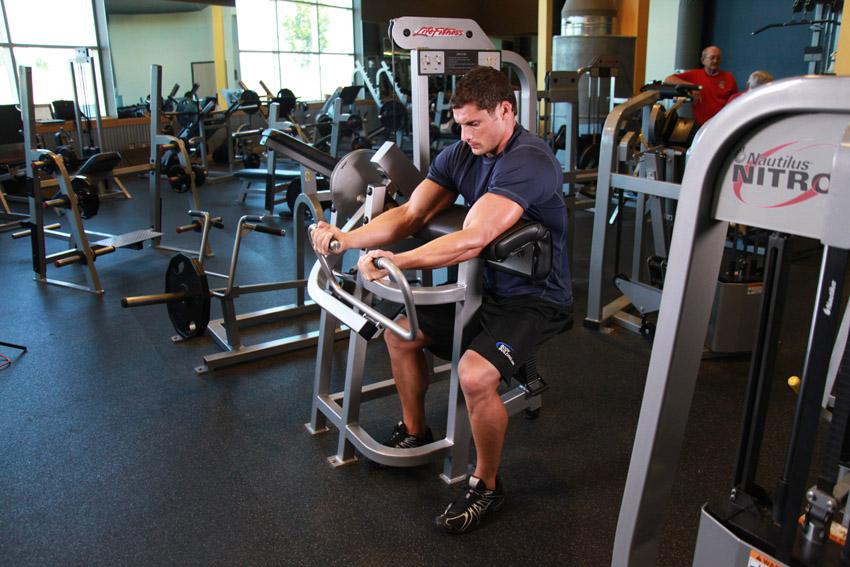 Программа тренировок со штангой для новичков на 8 недель