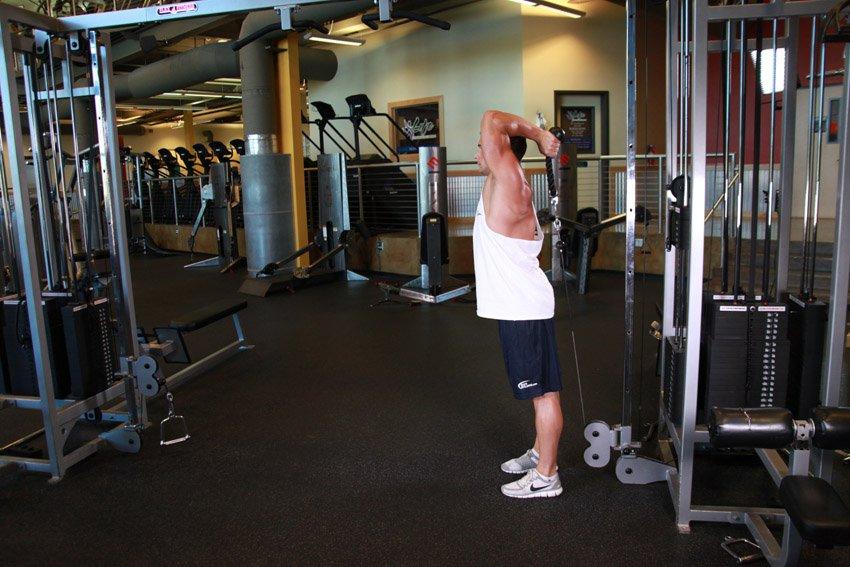 Программа тренировок для рук на массу