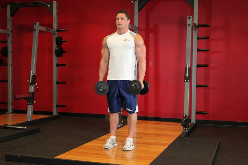 Программа базовых упражнений для начинающих