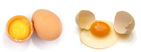 Яичный альбумин