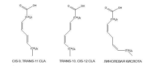 CLA-1