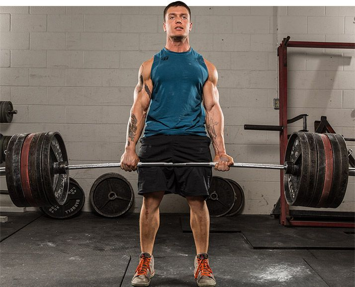 Программа тренировок из базовых упражнений