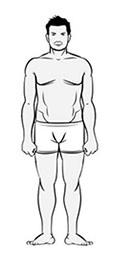optimalnoe-sootnoshenie-belkov-zhirov-i-uglevodov-4