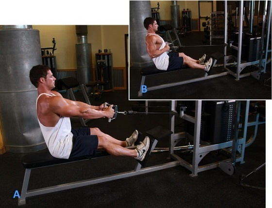 Тренировка спина плечи