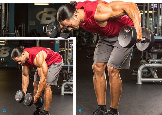 7 эффективных упражнений на задние дельты. Разведение рук с гантелями стоя в наклоне
