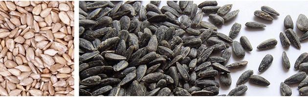 Содержание клетчатки в орехах