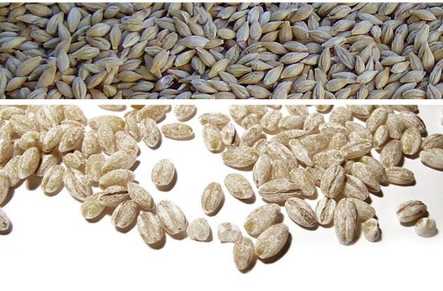 Богатые клетчаткой зерновые