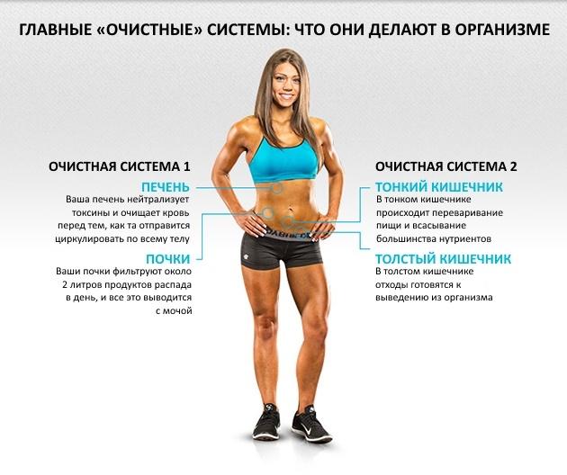 ochishhenie-organizma-s-tochki-zreniya-sportsmena-3