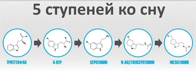 sportivnoe-pitanie-dlya-sna-i-vosstanovleniya-5