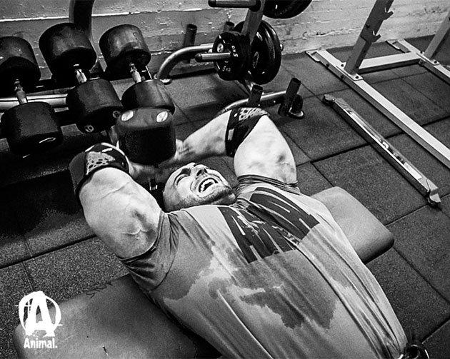 Тренировка груди и спины в стиле хардкор