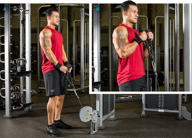 14 luchshix uprazhnenij dlya bicepsov dlya muzhchin 1 14 лучших упражнений для бицепсов для мужчин