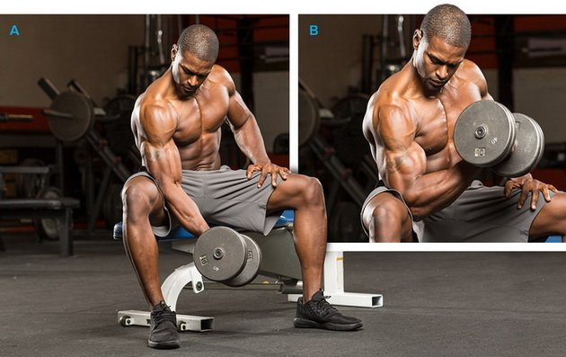 14 luchshix uprazhnenij dlya bicepsov dlya muzhchin 3 14 лучших упражнений для бицепсов для мужчин