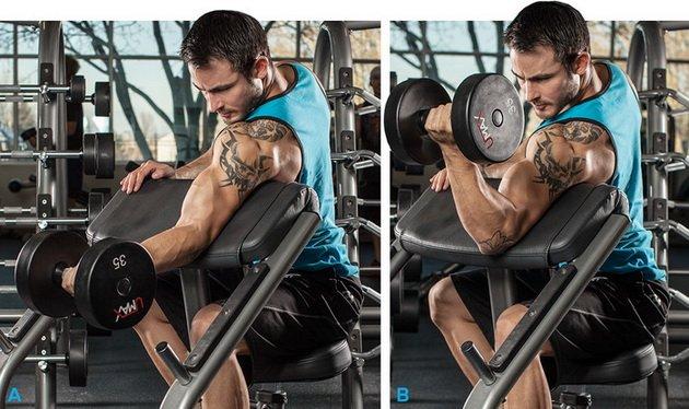 14 luchshix uprazhnenij dlya bicepsov dlya muzhchin 8 14 лучших упражнений для бицепсов для мужчин