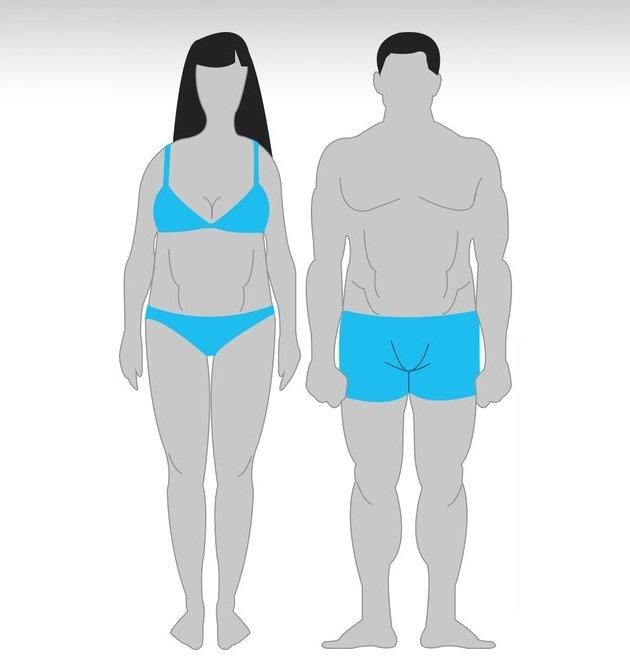 Особенности тренировок для разного типа телосложения