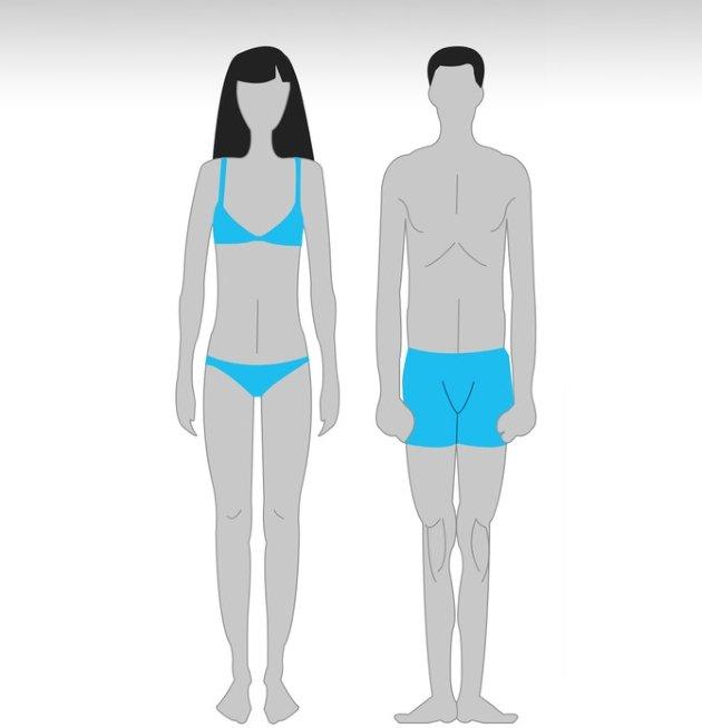 Как тип телосложения влияет на стратегию тренировок