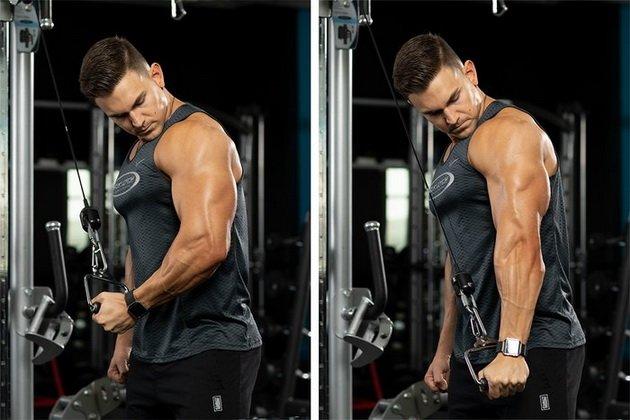 kak prokachat vse golovki tricepsa na odnoj trenirovke 1 Как прокачать все головки трицепса на одной тренировке