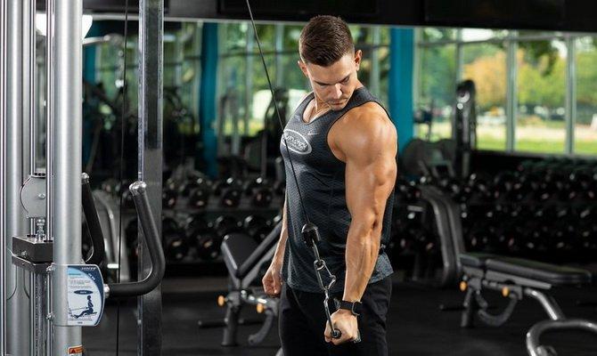 kak prokachat vse golovki tricepsa na odnoj trenirovke Как прокачать все головки трицепса на одной тренировке